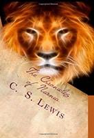 juvenile fiction definition book cover