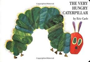 picture book genre book cover